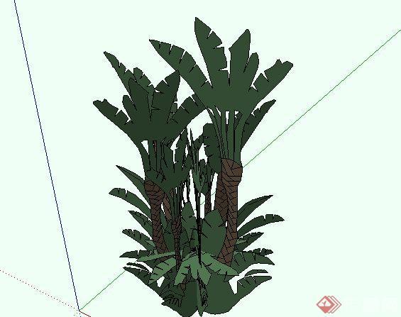 东南亚风格椰子树植物SketchUp SU 3D模型