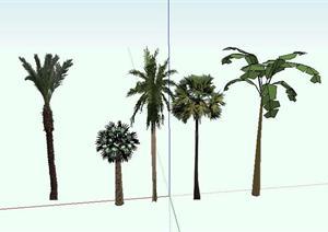 东南亚5种热带植物景观小品sketchup(su)3d模型