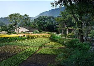 某乡村农家田园园林景观设计效果图psd格式