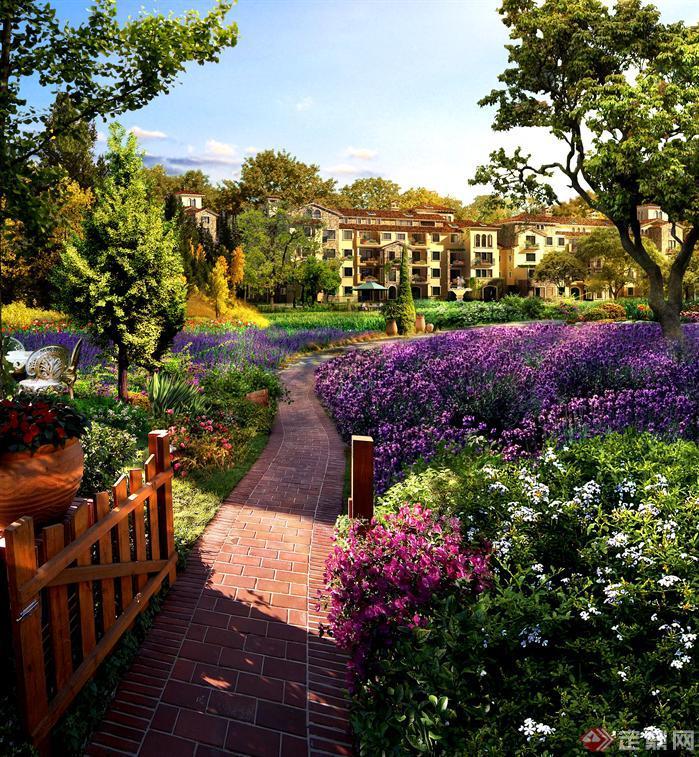 别墅花园花境景观设计psd效果图