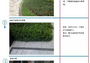 园林种植技术养护交底模版——2013.11.22