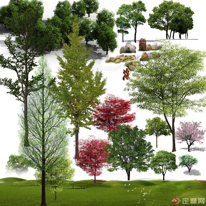 红叶植物乔木psd效果图素材