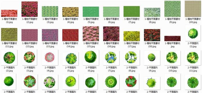 ps常用平面植物图例