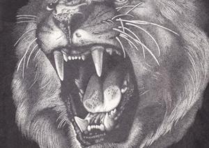 书画艺术之动物钢笔画