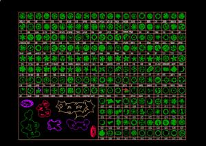 园林植物平面CAD图例大全