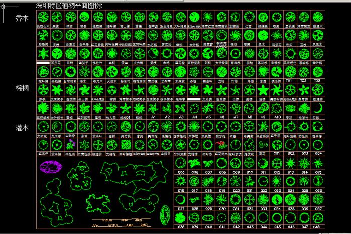 园林植物cad平面立面图例大全(含深圳地区植物)