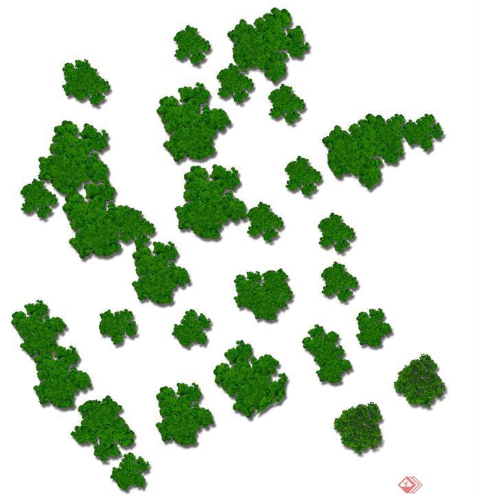 园林景观平面植物psd分层素材