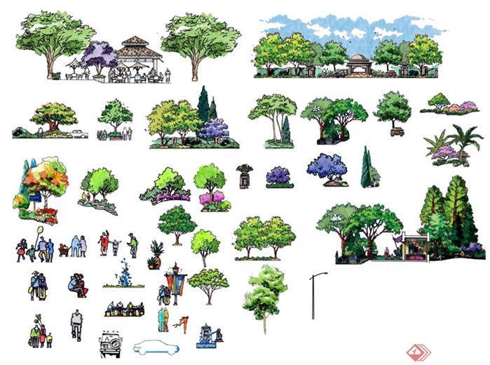 景观植物手绘图例园林景观植物图例植物平面图例