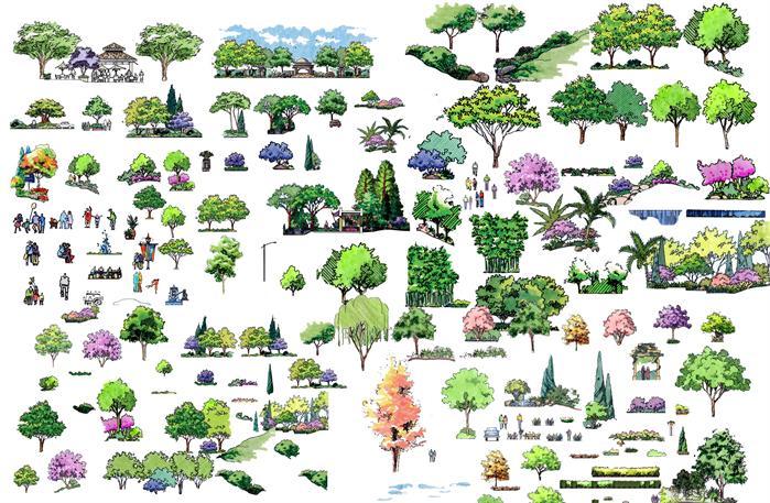 景观设计素材之手绘植物(psd格式)[原创]