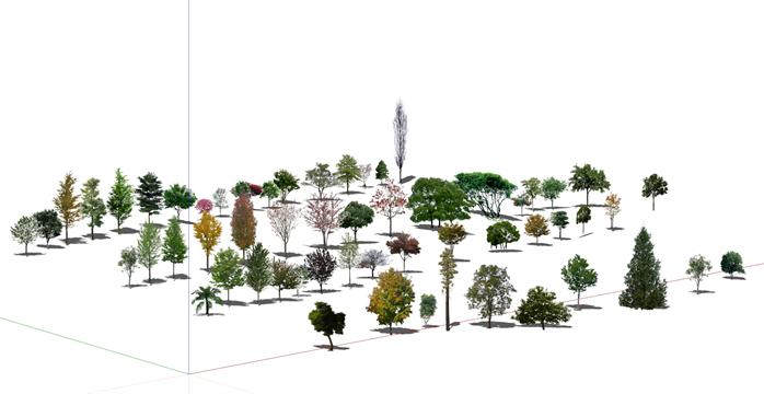 某SU常用乔木2D真实树素材合集