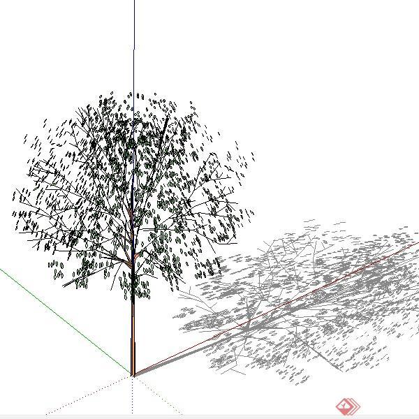 设计素材之景观植物乔木设计方案su模型10
