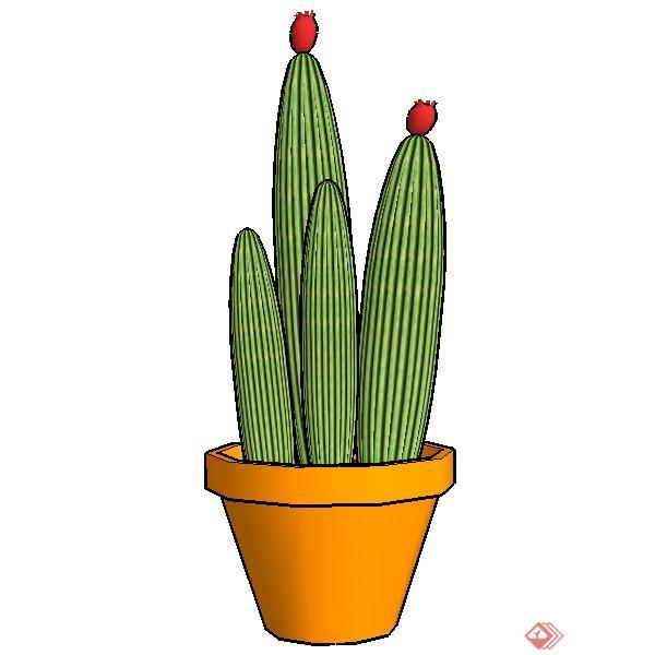 一棵盆栽仙人掌的景观植物设计su模型