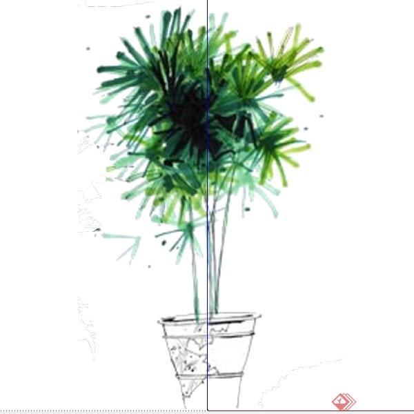 设计素材之景观植物盆栽树设计素材su模型