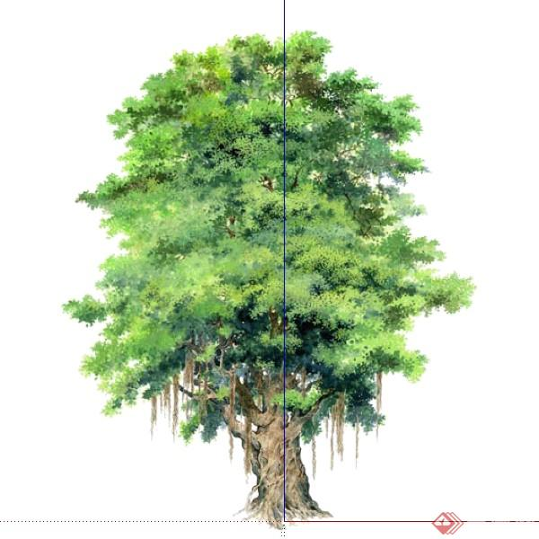 设计素材之景观植物乔木设计素材su模型40