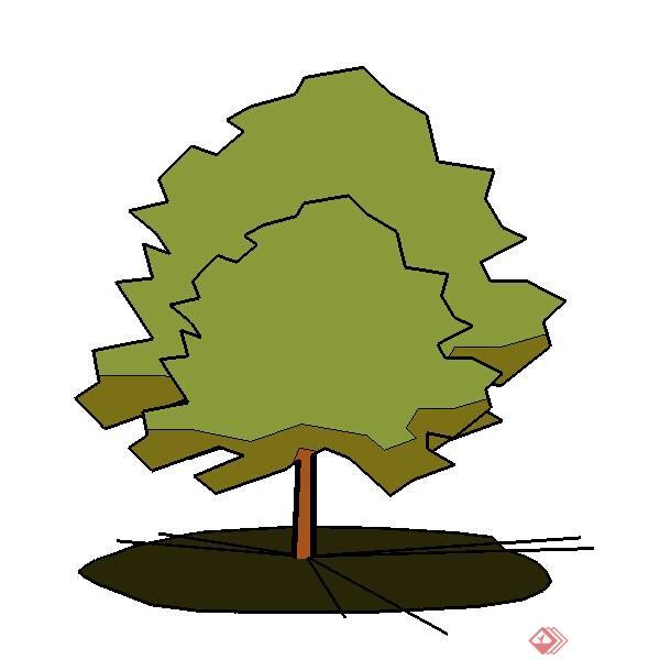 一株园林层状树su模型素材