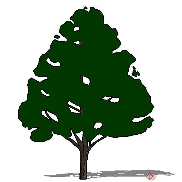 设计素材之景观植物乔木设计素材su模型26