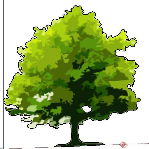 棕榈树平面图手绘景观展示