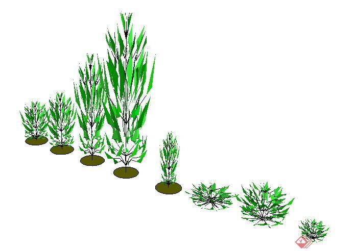 盆景 盆栽 设计 矢量 矢量图 素材 植物 697_492