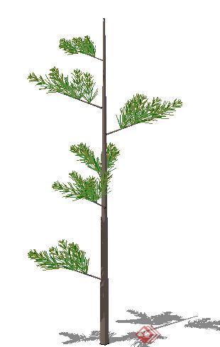 配景植物素材之景观植物乔木设计方案su模型23
