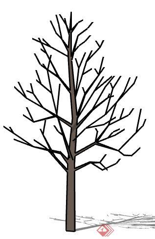 一棵树木树干设计的su模型(1)
