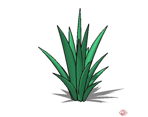 某现代风格园林植物小灌木su模型素材