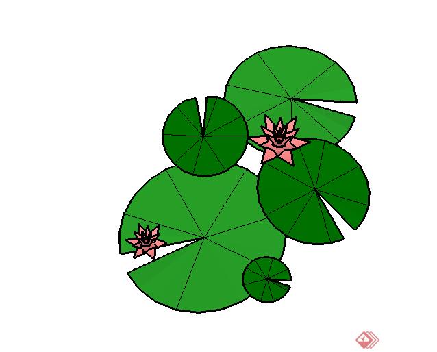 某现代风格园林植物荷花su模型素材(1)