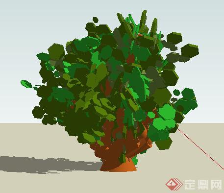 设计素材之景观植物灌木设计素材su模型1