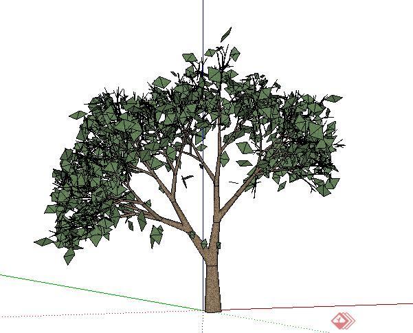 设计素材之景观植物乔木设计素材su模型6