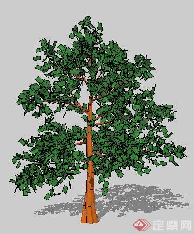 一株园林景观树木su模型素材(2)(1)