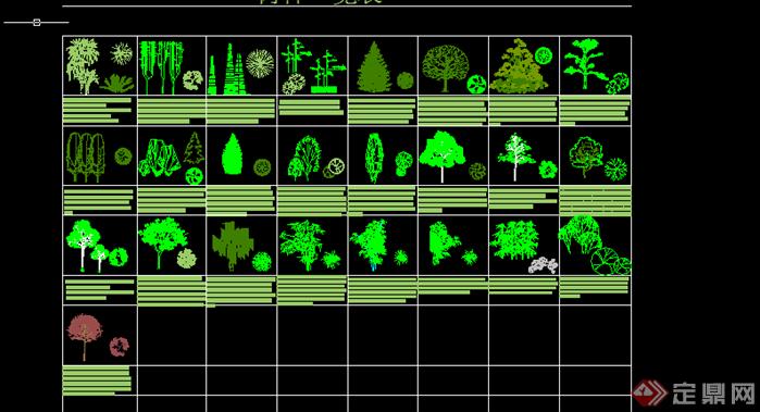 某园林景观植物立面图图例cad图纸