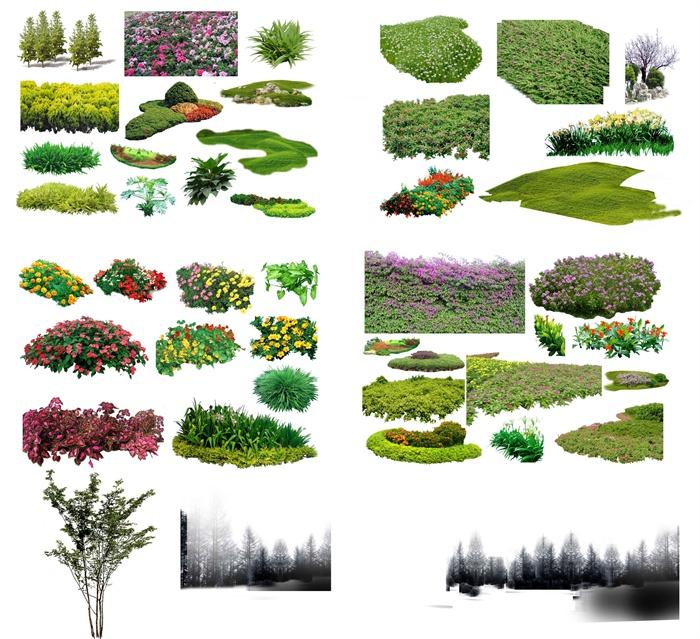 多款园林景观植物psd素材[原创]