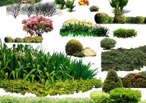 景观植物PSD立面素材