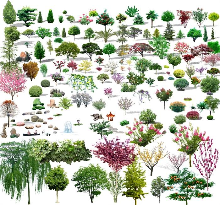多种园林景观植物树木花卉psd素材[原创]