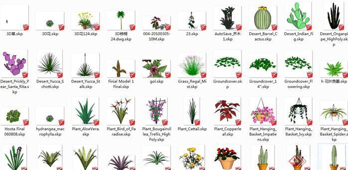 园林景观植物图库su模型1