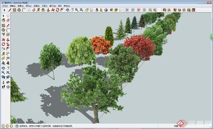 园林植物SU模型素材大全