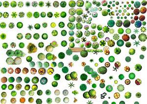 多个手绘平面景观植物效果图配景素材(含PSD+JPG格式)